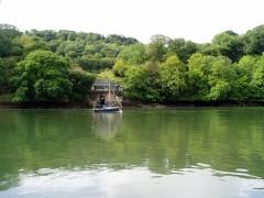 12-08-2011 rivière Dart 5.JPG